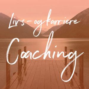 Coaching i Enger, Oppland